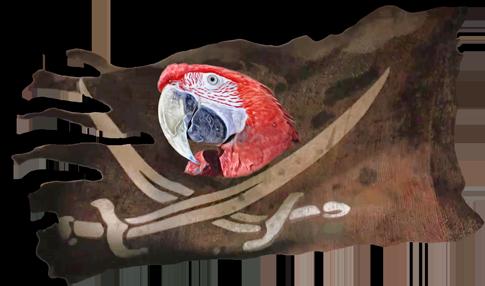papegaaienspeelgoed en papegaaienvoeding bij Dieca