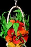 Bloemen voor je papegaai - dieca - 3