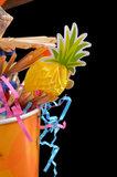 Papegaaienspeelgoed - dieca - puch bowl 3