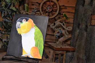 Zwartkop Caique Olieverf Schilderij