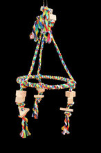 Pyramid Swing Color Medium