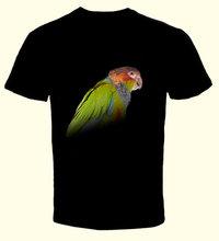 T-shirt Pyrrhura Cruentata