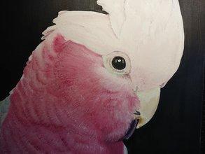 Rosé Kaketoe Olieverf Schilderij