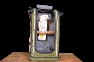pak o bird Celltei rugzak Large voor papegaaien 1