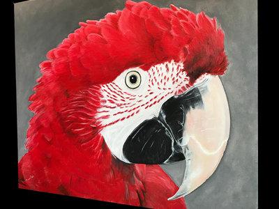 Groenvleugel ara schilderij Dieca