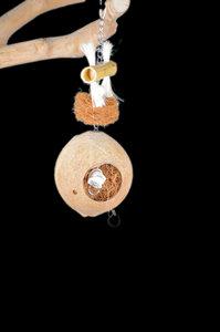 coconut parrot toy